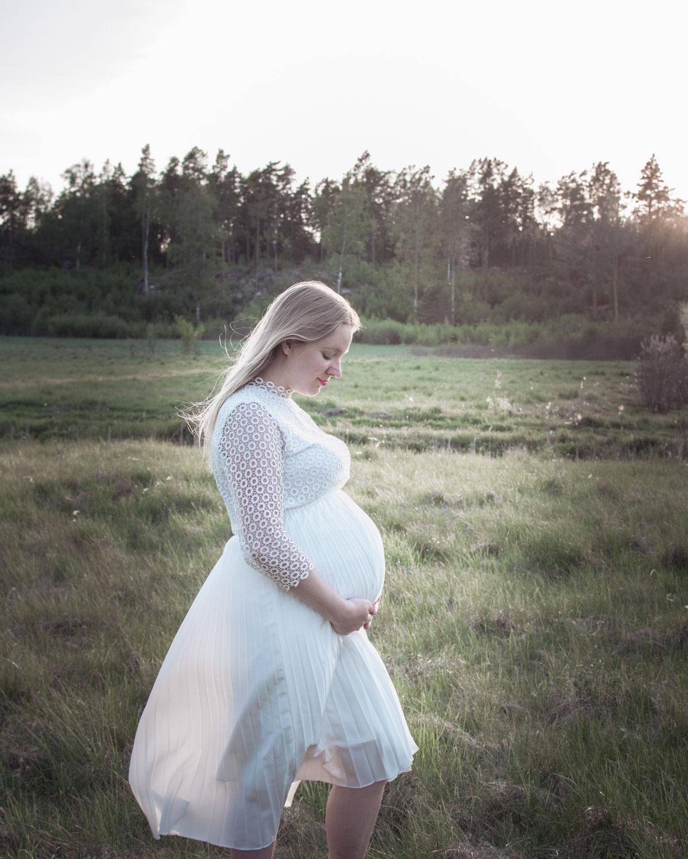 Min graviditet v27 (26+0-26+6)